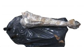 stockfish-bale-40to50-100lbs